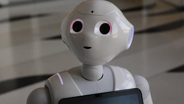 Первый робот-консультант проработал на своей работе всего неделю