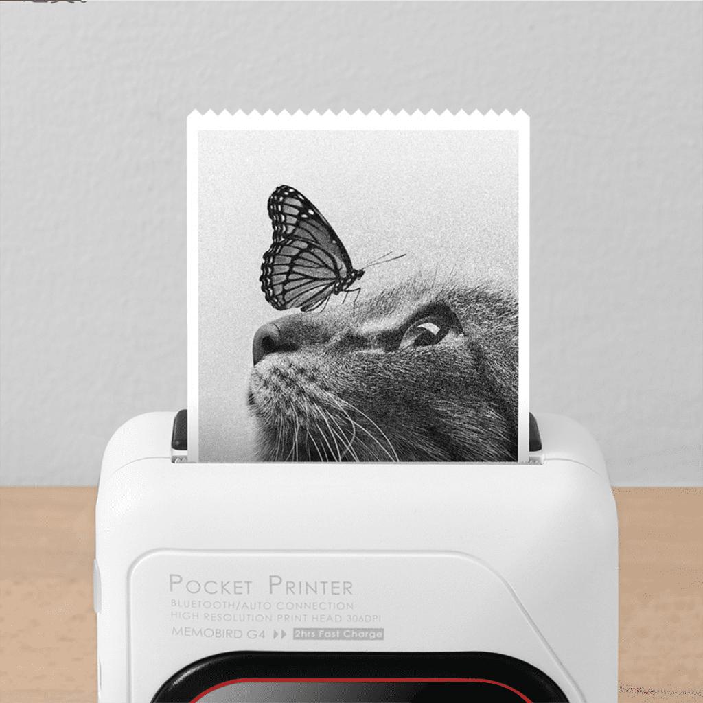 Xiaomi создала черно-белый карманный принтер за $42