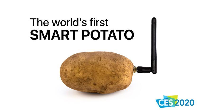 Французы привезли на CES 2020 устройство для общения с картошкой