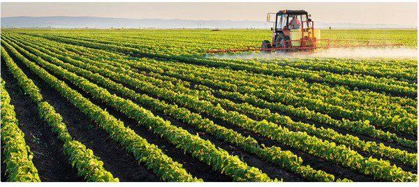 ГОСТ Р 57022-2016: новый порядок подтверждения соответствия органической продукции