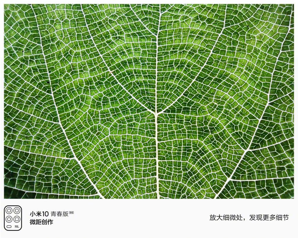 В сети показали большие возможности камеры Xiaomi Mi 10 Youth