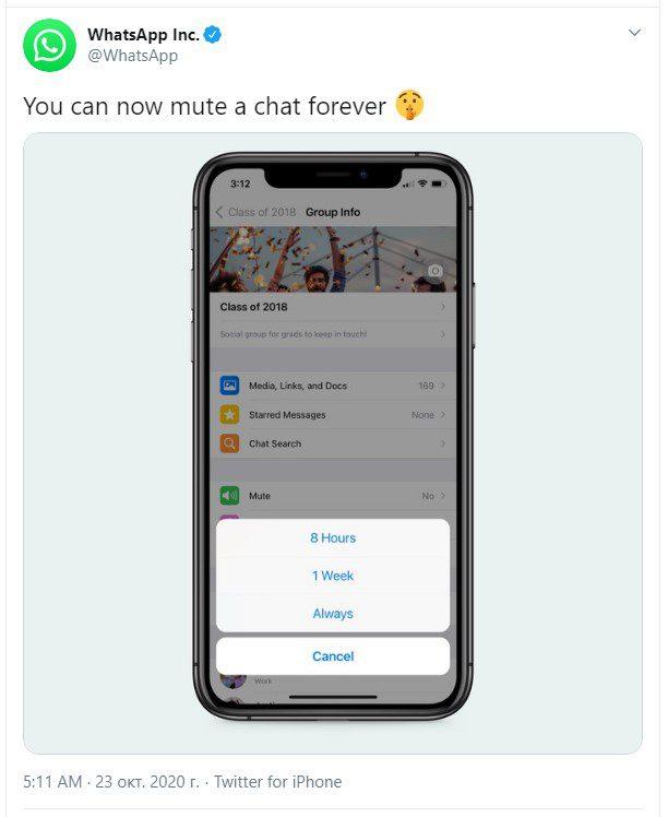 WhatsApp позволил пользователям навсегда выключать уведомления, а не на год