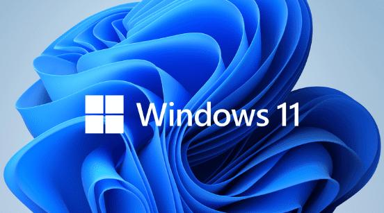 Windows 11 для Mac находится в разработке