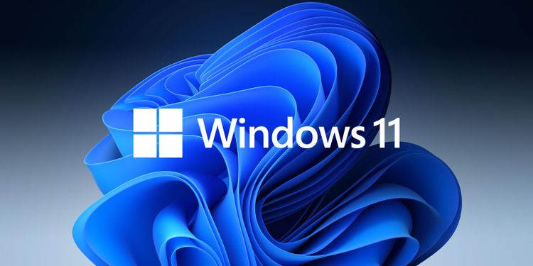 Можно ли установить Windows 11 на несовместимый компьютер?