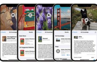 iOS 15: как использовать визуальный поиск в фотографиях для определения достопримечательностей, растений и домашних животных